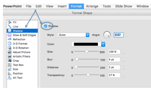 How to format shapes in PPT