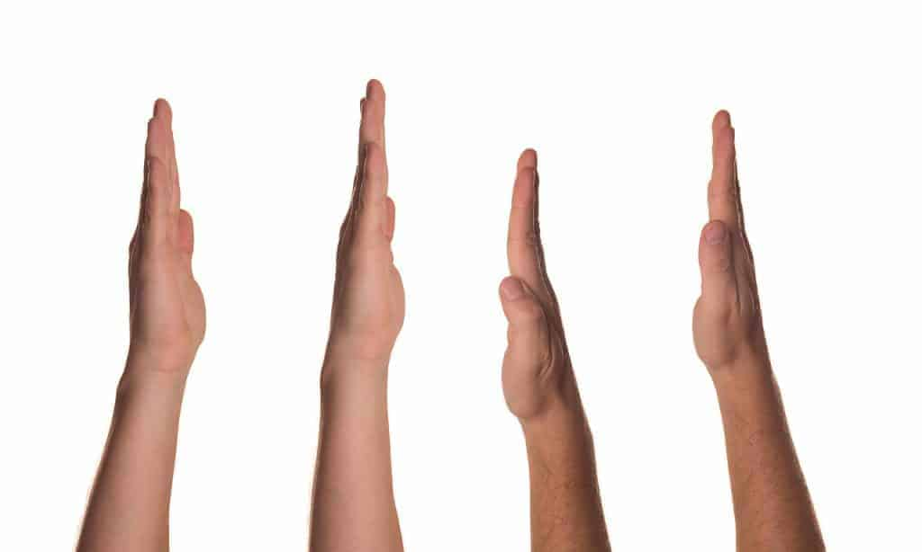 interactive hand signals